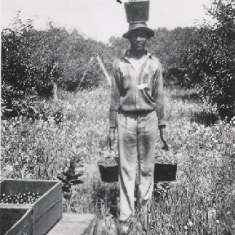 Migrant worker at Fardig Orchard