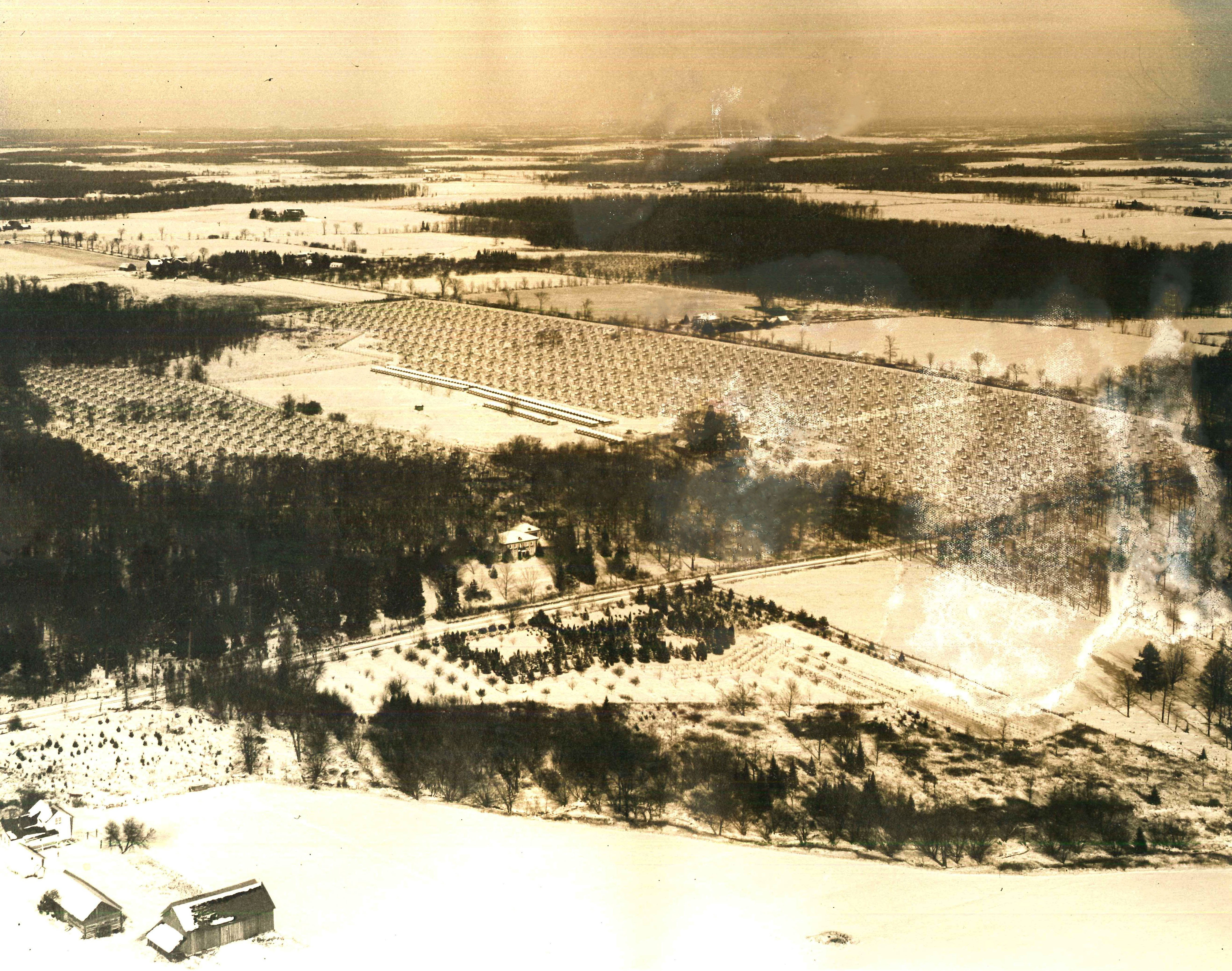 An aerial view of the Fromm fur and ginseng farm in Hamburg, Wisconsin. Date unknown. Photograph courtesy of the Marathon County Historical Society.