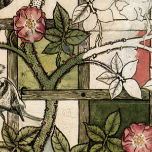 detail of William Morris wallpaper showing rose vines twining through a green lattice