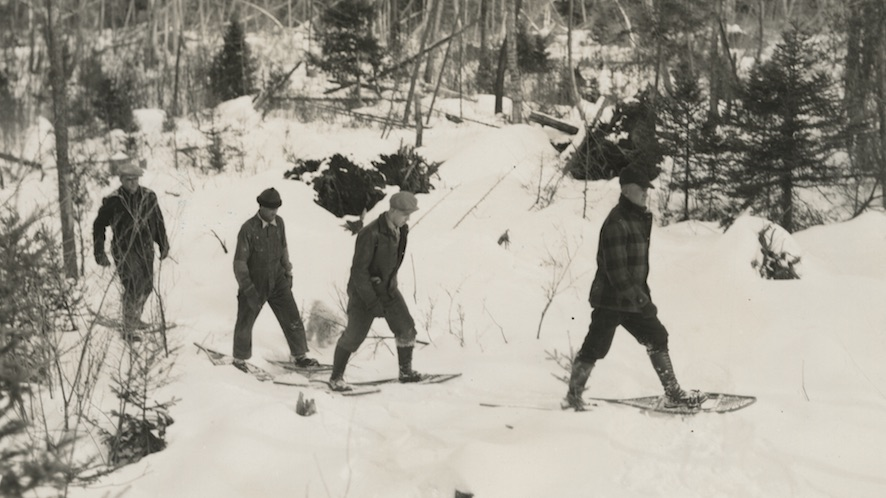 Four men snow shoe through the woods in northern wisconsin