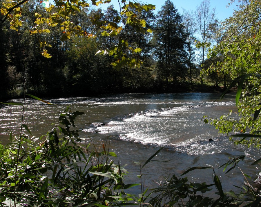 an image of a triangle shaped fishing weir in a river