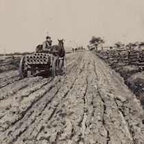 a cropped image of a man hauling pipes over a deeply rutted country road