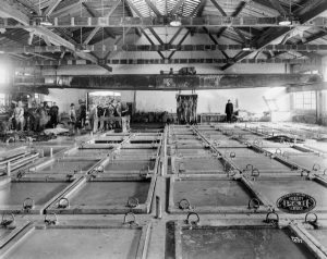 A black and white image of a long room filled with square pits in the floor filled with grey water