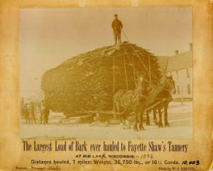 a faded photo of a sled piled nearly twenty feet high with hemlock bark