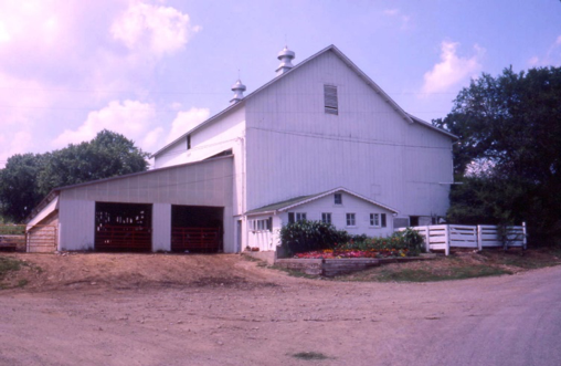 a color photo showing a swiss style bank barn painted white with a lean-to on one side